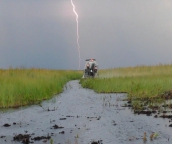 get in touch with nature also have a airboat ride