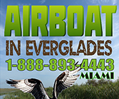 airboat miami